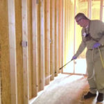 Termite Inspection: An Important Step in the Termite Damage Repair Process