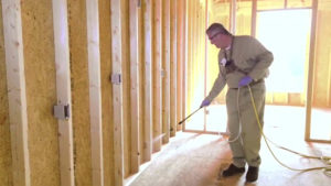 Termite Damage Repair Process