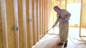 Termite Damage Repair Process